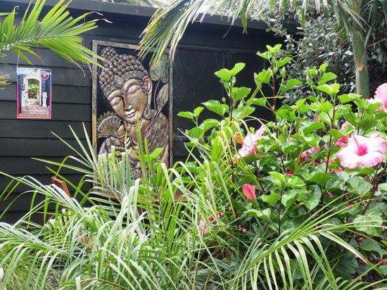 Secret Garden: Tropical vegetation