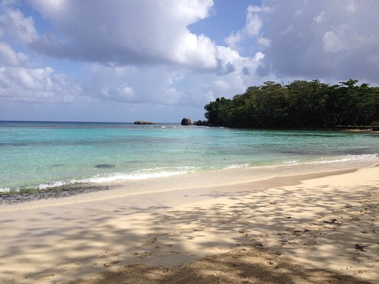 Winnifred Beach : Beach