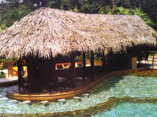 Tabacon Thermal Resort & Spa: hot springs swim up bar