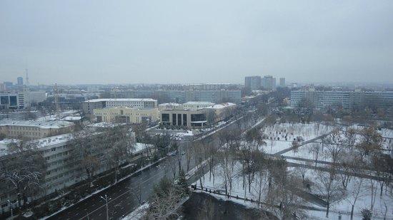 Hotel Uzbekistan: View from Room
