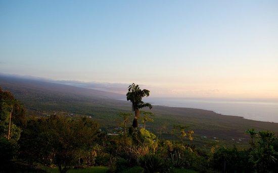 Ka'awa Loa Plantation: Superbe!
