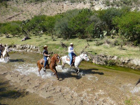 Rancho Xotolar: The race is on!