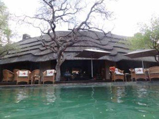 Tuningi Safari Lodge : The view from in the pool