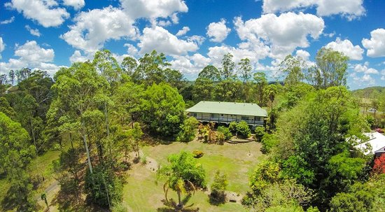 Eumundi Rise Bed & Breakfast: Back garden