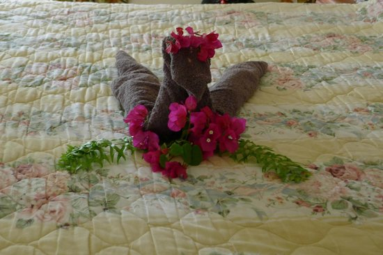 Still Beach House: flowers on the bed when we arrived
