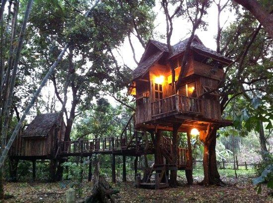 Rabeang Pasak Tree House Resort: Longan Family Treehouse
