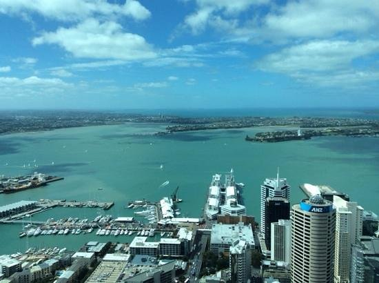 VR Auckland City: view from sky tower