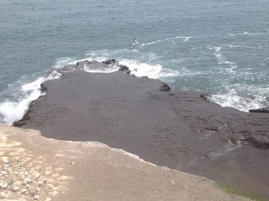 Milestone Tours: People surfing, beautiful volcanic rock