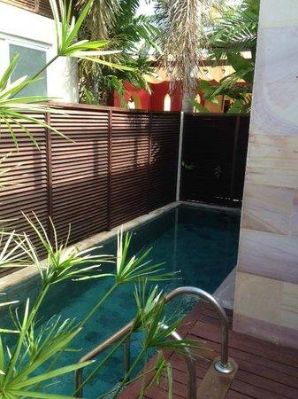 Elements Boutique Resort & Spa Hideaway: Villa Pool
