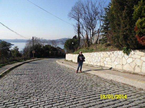 Bosphorus Strait: Дорога к крепости,дата окончания работ 1158 год,Сму № 1 ый век нашей эры !