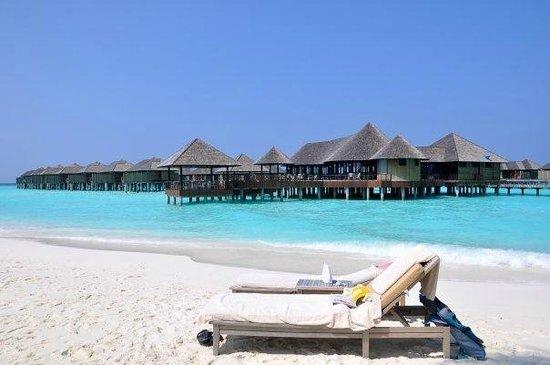 The Sun Siyam Iru Fushi Maldives : beautiful irufushi