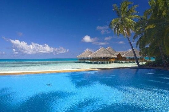 The Sun Siyam Iru Fushi Maldives: beautiful irufushi