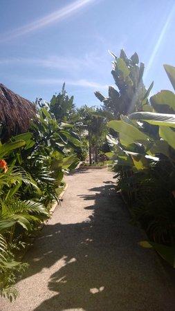 Laguna Gili Beach Resort: Well-kept grounds