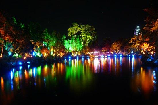 Pukekura Park: Festival of Lights