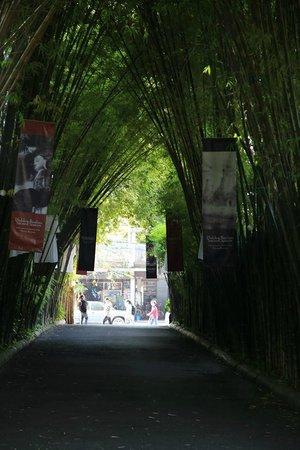 Tamarind Village: 入口景觀