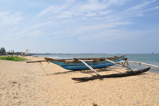Catamaran Beach Hotel: la plage