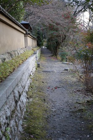 Philosopher's Walk: Path on the east side on the canal