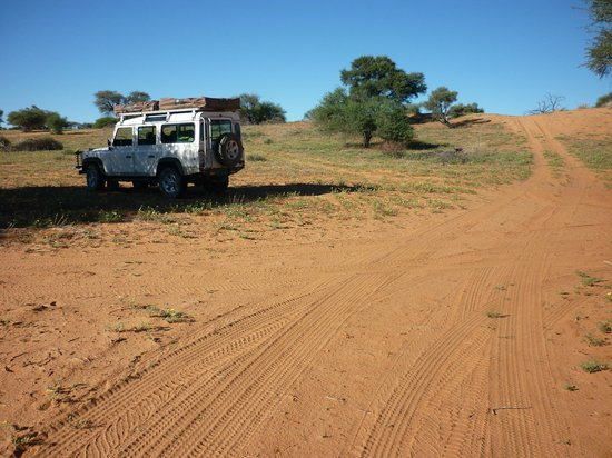 South Africa 4x4: Our defender in the bush/1