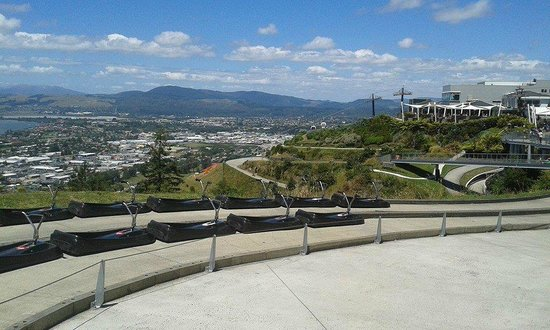 Skyline Rotorua : The little luge powered by gravity and controlled by YOU!