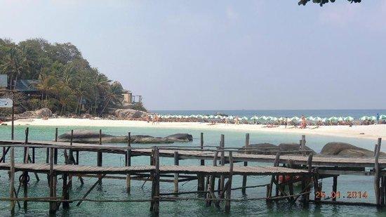 Koh Nang Yuan: The beach with sea on both sides