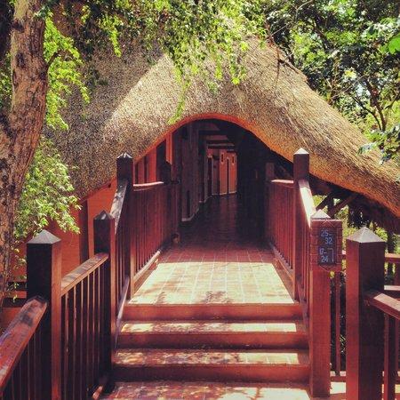 Victoria Falls Safari Lodge: The walk to your room
