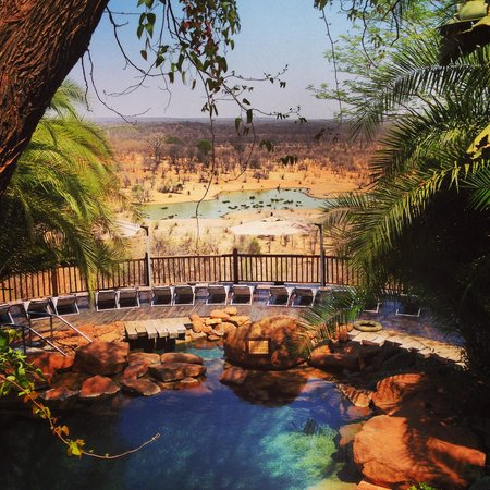 Victoria Falls Safari Lodge : Pool w/a view