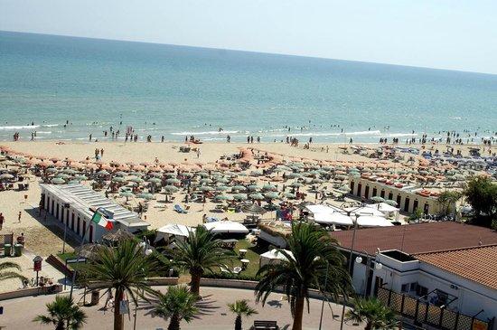 Hotel Venezia: Una splendida spiaggia dorata