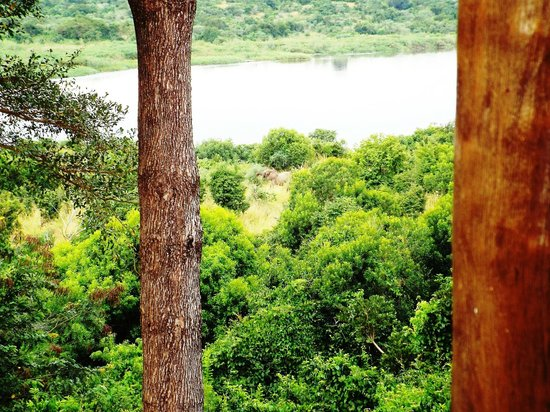 Paraa Safari Lodge: View from Restaurant