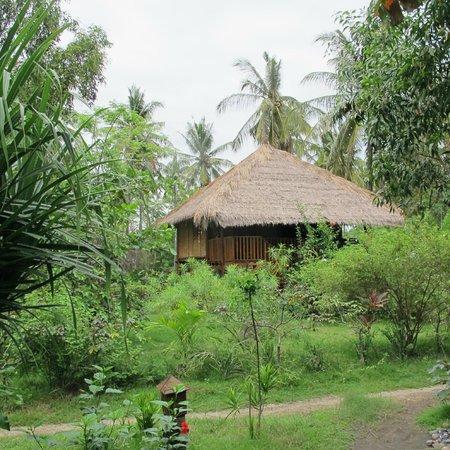 Tangga Bungalows: Garden and house #1