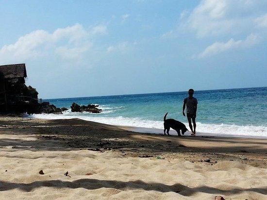 West Coast Beach Resort: The private beach