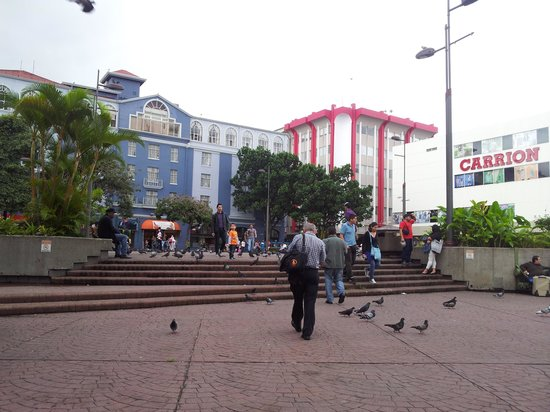 Plaza de la Cultura : Lots of people...  Even more pigeons