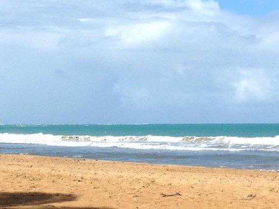 Wyndham Grand Rio Mar Puerto Rico Golf & Beach Resort : Just past the grounds