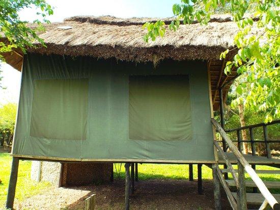 Ishasha-Ntungwe River Camp: Tent
