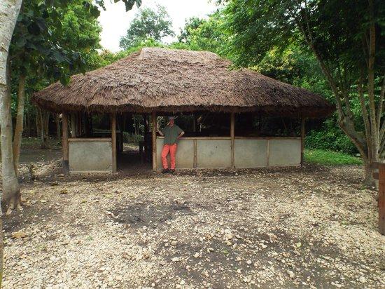 Ishasha-Ntungwe River Camp: Restaurant