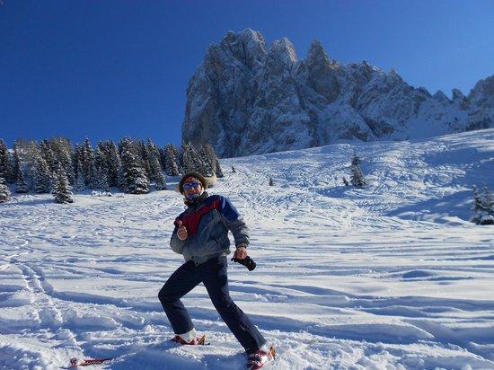 Kedul Alpine Lodge: sassolungo