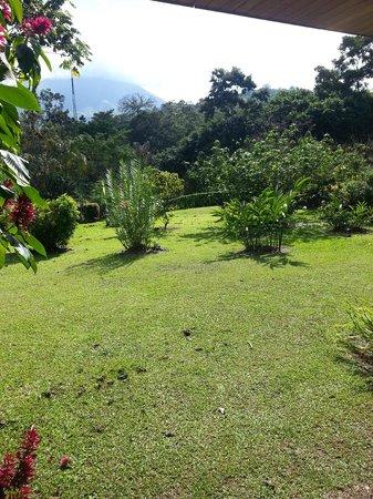 Volcano Lodge & Springs : vista de la habitacion