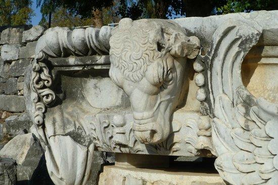 Didyma (Didim): Didym Apollo temple
