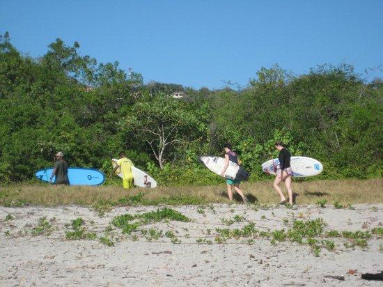 Safari Surf School: Short walk through canopy to Safari Surf