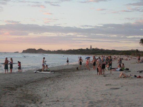 Safari Surf School: Sunset crowd