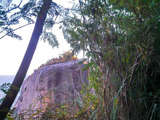 Claudio Coutinho Trail: Vista