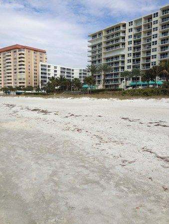 Sandcastle Resort at Lido Beach : Vista Playa, edificios al lado del Hotel