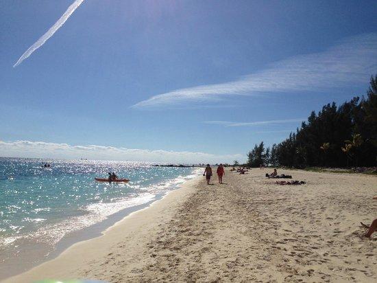 Sandcastle Resort at Lido Beach : Playa del Hotel, carpas y cancha voley
