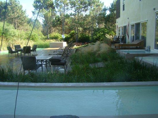 La Viuda de Jose Ignacio: con vista a la piscina, tomamos nuestros desayunos.