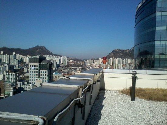 Hotel Atrium Vabien II : Sky Garden on roof