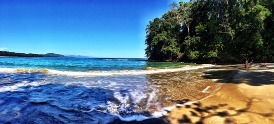 Selvin's Cabinas: Playa Punta Uva absolutely beautiful!