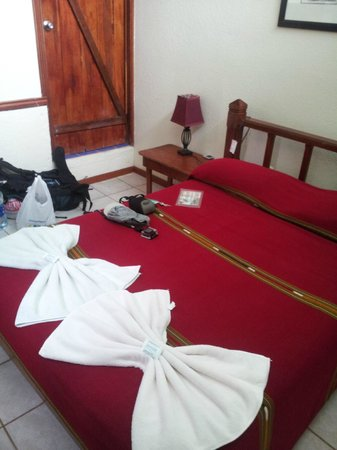 Jinetes de Osa Hotel: Standard room- very clean and spacious