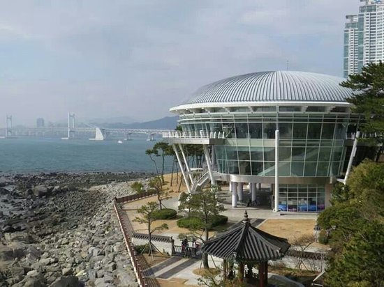 APEC Naru Park: 世峰臺