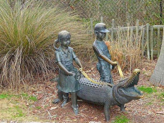 Picture Of Alligator Adventure