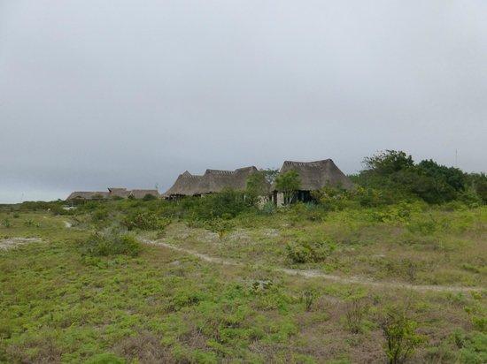 Hotel Xixim: hotel grounds
