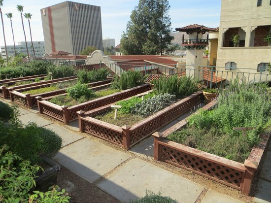 The Mission Inn Hotel and Spa : Rooftop herb garden for restaurant